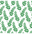 background branches nature decoration pattern vector image vector image