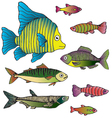 cute fish on transparent background vector image vector image
