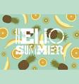 hello summer exotic fruits grunge poster design vector image