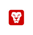 lion head with square vector image vector image