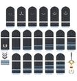 Royal Air Force insignia vector image
