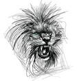 sketch of lion head vector image vector image