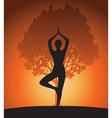 Woman in yoga tree asana vector image vector image