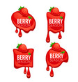 berry season collection of shine and glossy vector image