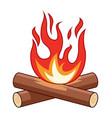 bonfire flame vector image vector image