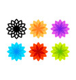 colorful flowers isolated on white background vector image vector image
