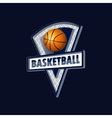 logo for a basketball team or a league vector image vector image