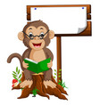 monkey reading a book vector image vector image