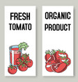 tomato fresh juice background set banners vector image vector image