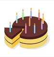 Chocolate cake birthday Festive candles on pie vector image vector image