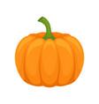 fresh ripe whole pumpkin on a vector image vector image