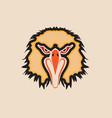 head eagle vector image