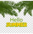 hello summer green palm leaf transparent vector image