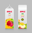 juice carton box pack 3d with whole and cut apple vector image vector image