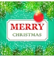 Merry Christmas Card design with fir branches vector image