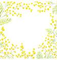 watercolor mimosa frame vector image vector image