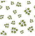 seamless pattern with japanese-maple vector image