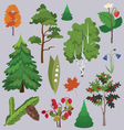 set of forest plants and trees vector image