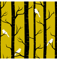 Birches and birds vector | Price: 1 Credit (USD $1)