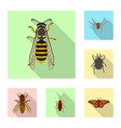 design of insect and fly symbol collection vector image vector image