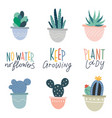 hand drawn home potted plants cute different vector image