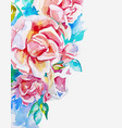 hand made watercolor pink roses corner to banner vector image vector image