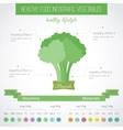 Healthy food flat infographic Broccoli vector image