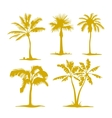 set palm tree silhouettes vector image vector image