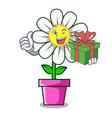 with gift daisy flower mascot cartoon vector image