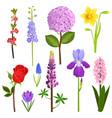 nature watercolor art flowers wreath vector image