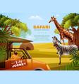 safari colored poster vector image