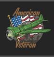 american veteran aircraft squad vector image vector image