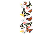 border realistic swallowtail butterflies and vector image vector image