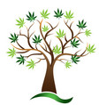 cannabis tree marijuana icon vector image