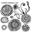Doodles flowers and design elements vector image