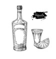 tequila bottle and shot glass with lime mexican vector image