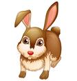 A big brown bunny vector image vector image