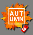 autumn concept banner cartoon style vector image vector image