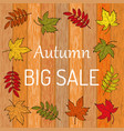 autumn sale poster on wood background vector image