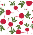 beautiful pattern of beets isolated icon vector image vector image