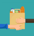 courier gives buyer a paper bag with groceries vector image