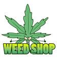 medical marijuana shop logos with hemp leaves vector image