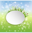 spring banner with blooming chamomile vector image