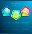 web infographic business concept vector image