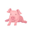 adorable pink piglet lying isolated on white vector image