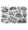 hand drawn cooked meat dishes sketches set food vector image
