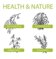 Handdrawn Set - Health and Nature Collection of vector image vector image
