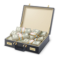 Money full of suitcase vector image vector image