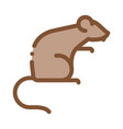 rat icon outline vector image