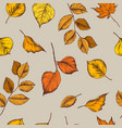 seamless pattern of birch orange leaves vector image vector image